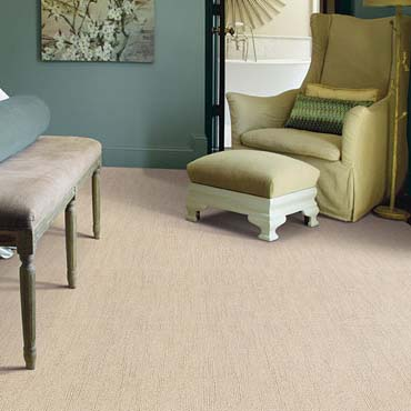 Caress Carpet by Shaw | Siler City, NC