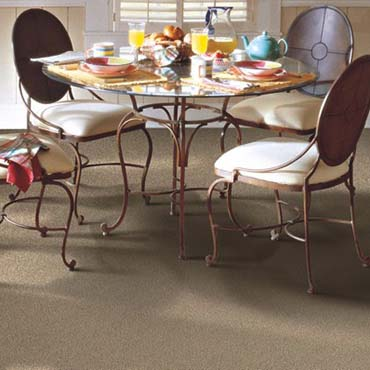 Horizon Carpet | Siler City, NC
