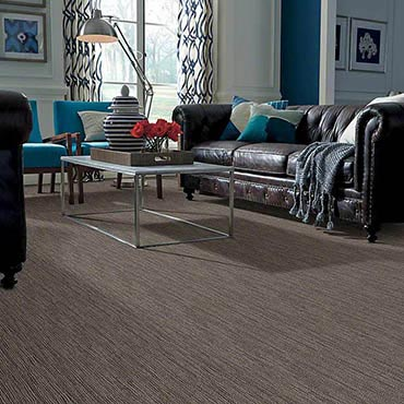 Anso® Nylon Carpet | Siler City, NC